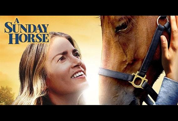 Sunday Horse